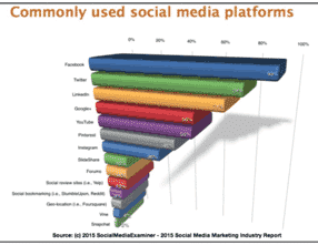 2015 social media survey report
