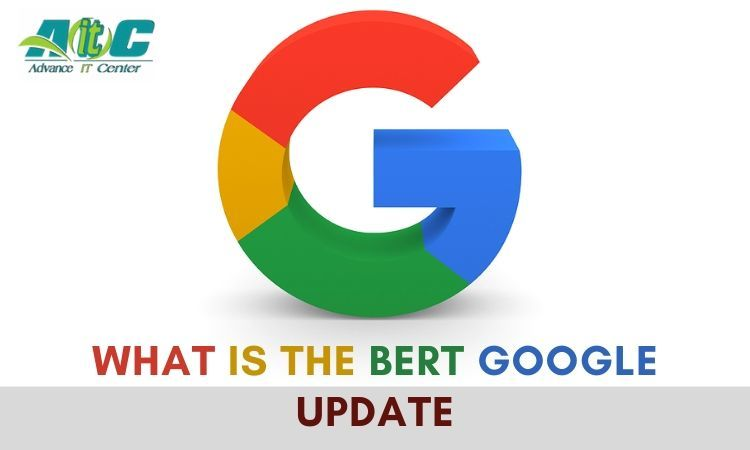 What is the BERT Google Update